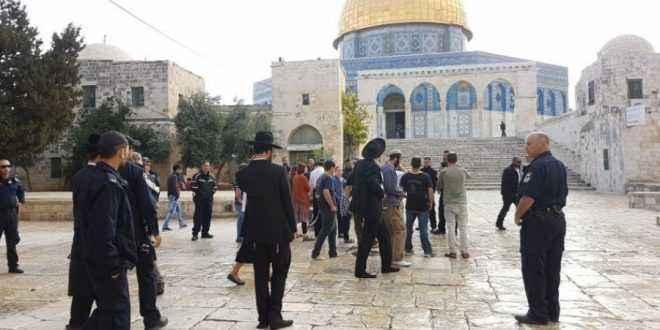 مستوطنون يجددون اقتحاماتهم للمسجد الأقصى بحراسة من الاحتلال الإسرائيلي